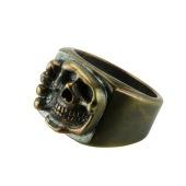Bonehead Skull Bronze 3